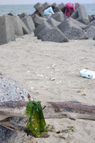 Nago_beach100111_12