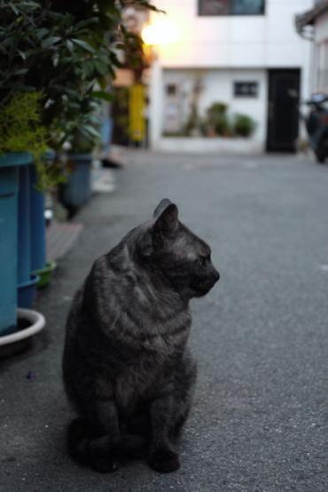 Onomichi100227_2