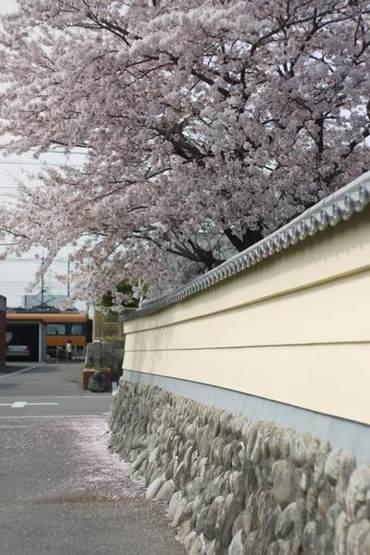 Shiroko100411_3