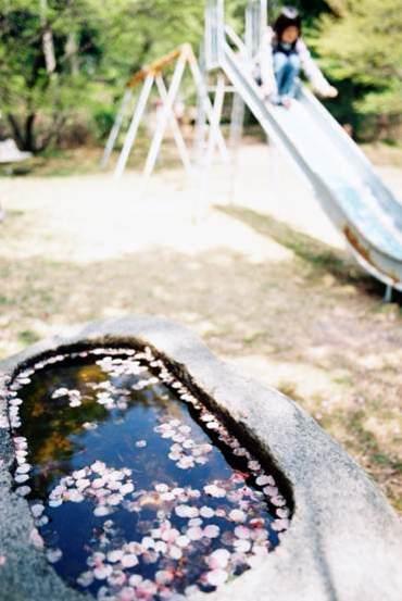 Ino_shrine100418_3