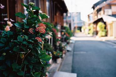 Tomida_isshiki100605_10