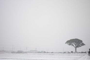 Snow110116_1