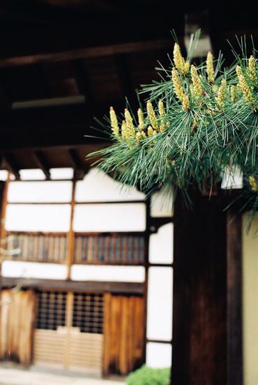 Kyoto110507_1