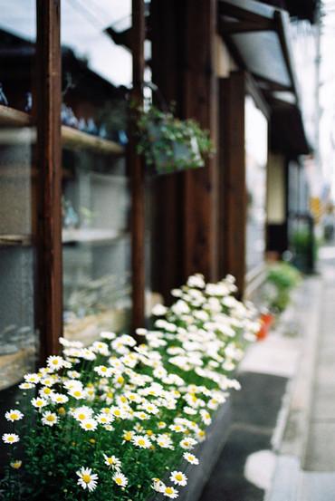 Kyoto110507_4