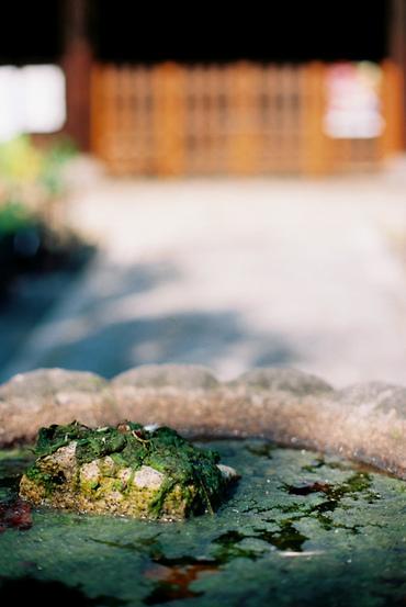 Kyoto111009_12