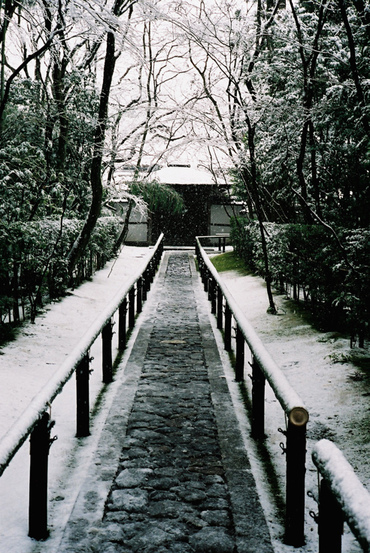 Kyoto20080209_5