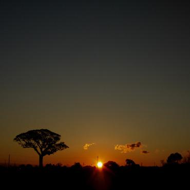 Sun_rise11112628mm_1