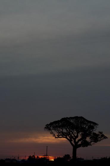 Sun_rise11112750mmf14_1