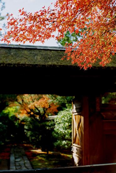 Kyoto11120450mmf14_8