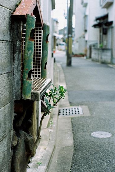 Kyoto11120450mmf14_11