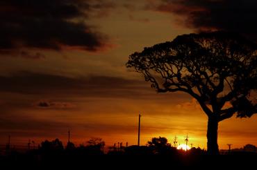 Sun_rise111224105cmf25_1