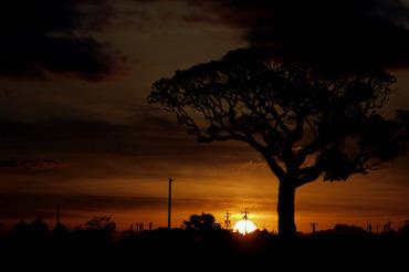 Sun_rise111224105cmf25_2