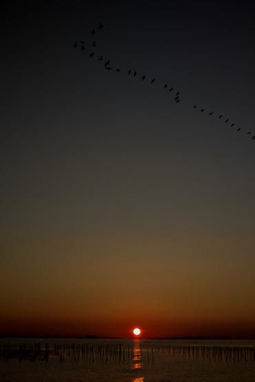 Sun_rise11123128mmf28_2