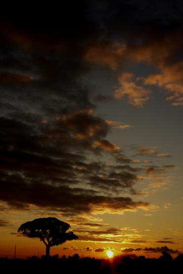 Sun_rise11010828mmf28_1