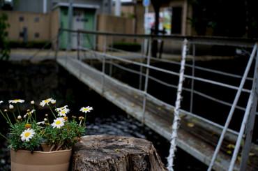 Kyoto12050128mmf35_14