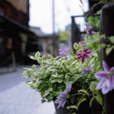 Kyoto12051380mmf28_2