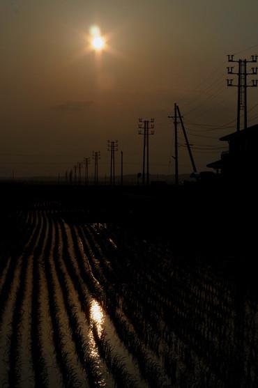 Sun_set1205275cmf2_1