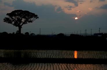 Sun_set1205275cmf2_2