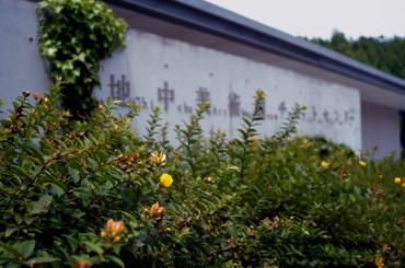 Naoshima12081328mmf28_5