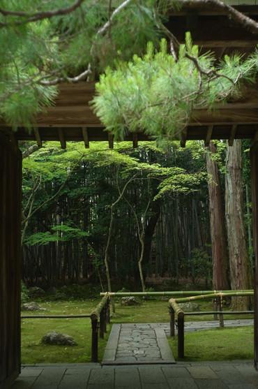 Kyoto130602summaron35cmf35_10