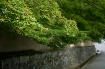 Kyoto130602summaron35cmf35_6